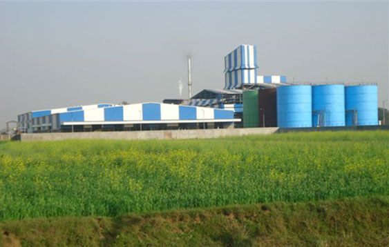Vegetable Oil Refinery Plant | Edible oil Refinery Plant